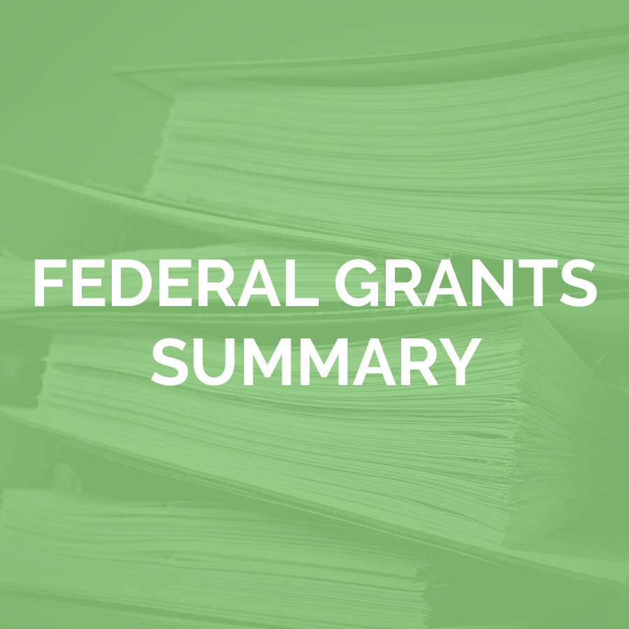 Federal Grants Summary
